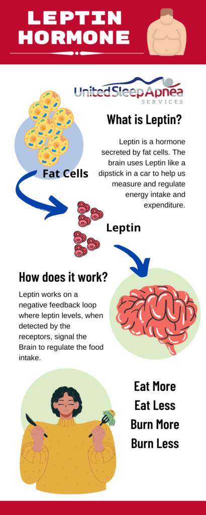 Leptin1 1